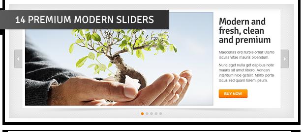 Premium Sliders