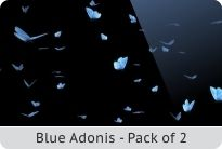 photo 12_Butterfly Swarm - Blue Adonis - Pack of 2_zps2faob280.jpg