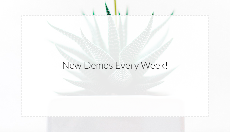 New Demos