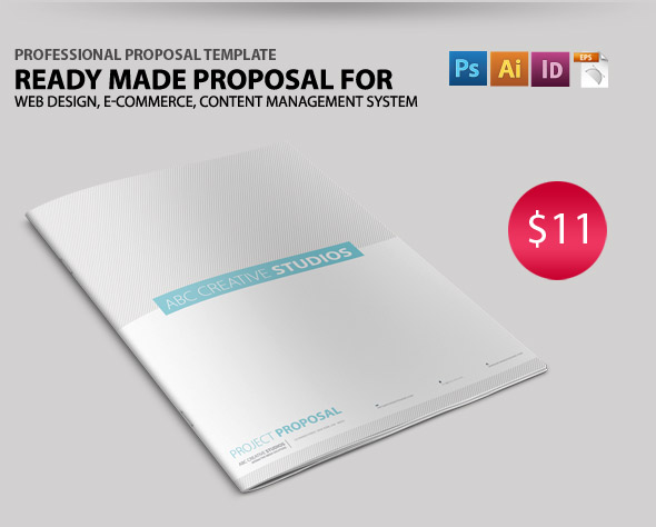 Professional Proposal Template By Feeltheblue | Graphicriver