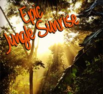 Epic Jungle Sunrise