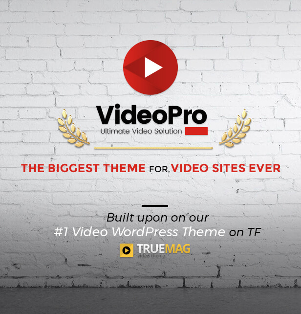 VideoPro - Video WordPress Theme - 10