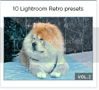 10 lightroom presets vol 2