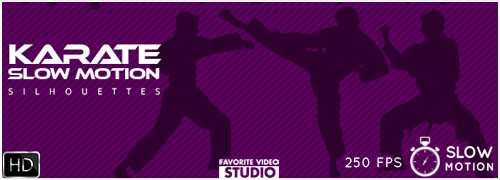 9 Karate Fighter Silhouettes Slow Motion