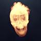 Skull Fire Logo Reveal