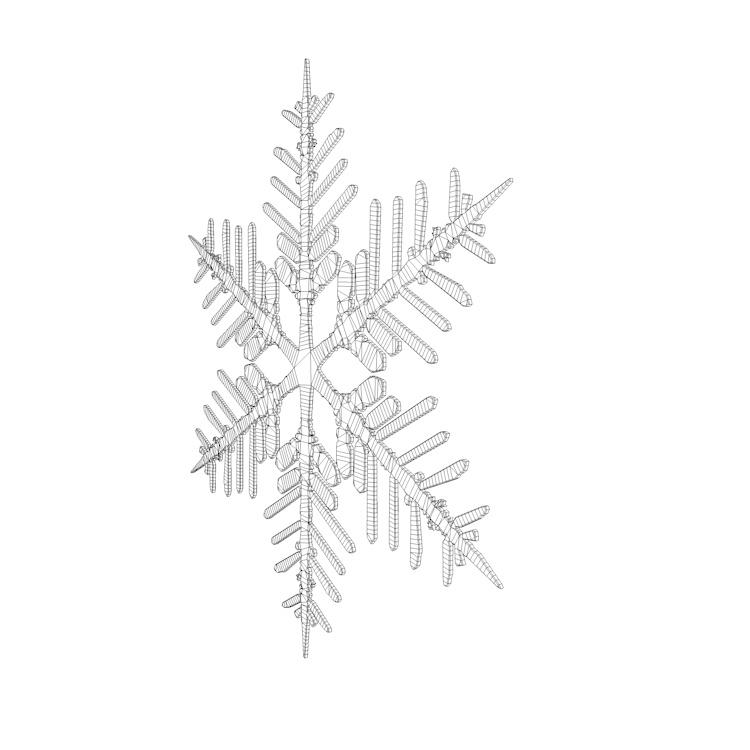 Snowflake ice 3d model