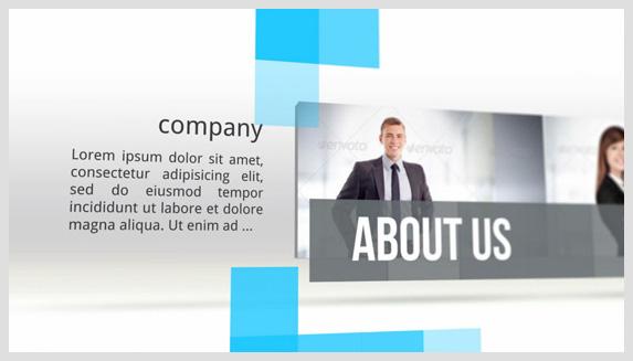 Company in Brief - 2