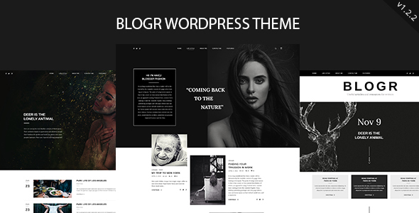 BLOGR - WordPress Theme for Special Bloggers