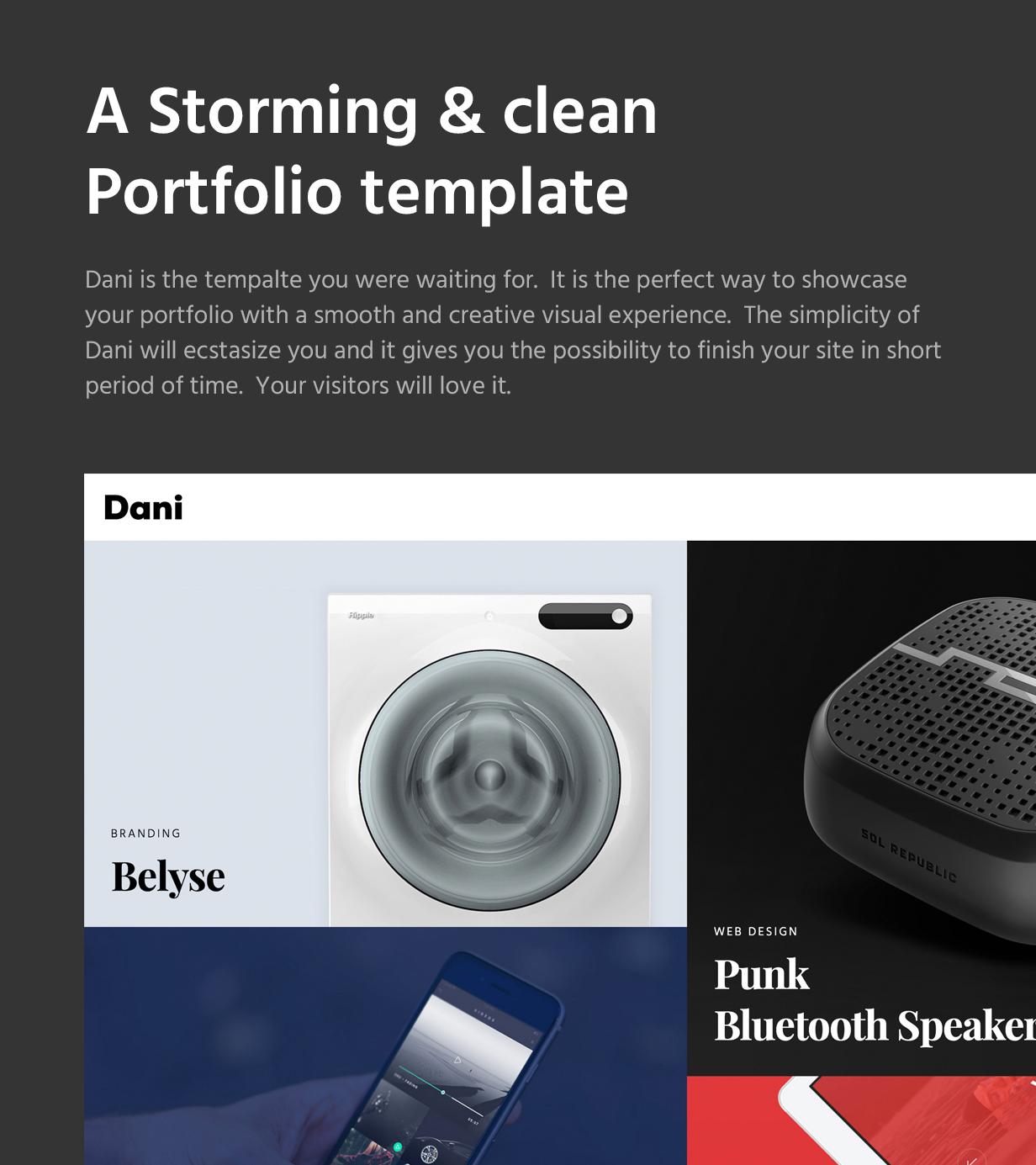 Dani - A Storming Portfolio & Shop WordPress Theme - 4