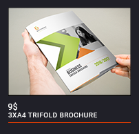Trifold Brochure - 87