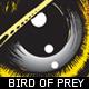 bird-of-prey-illustration-ioshva