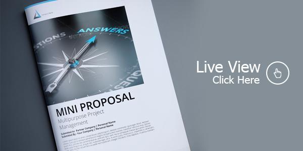 Mini Proposal Template By Terusawa Graphicriver