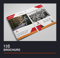 Trifold Brochure - 41