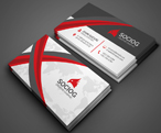 Luxury Business Card - 29
