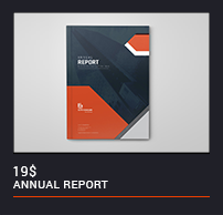 The Annual Report - 12