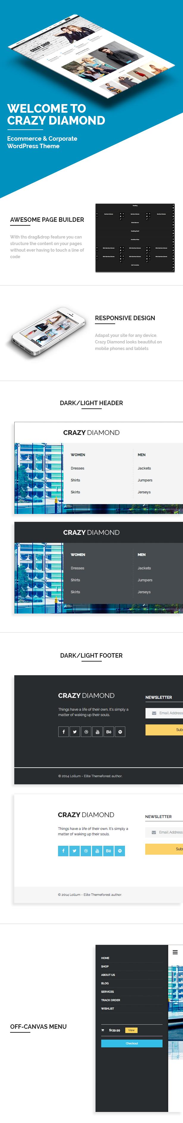 Crazy Diamond - Ecommerce & Corporate Theme - 31