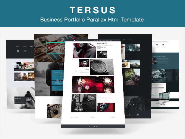 Tersus - Business Portfolio Agency Parallax Html Template