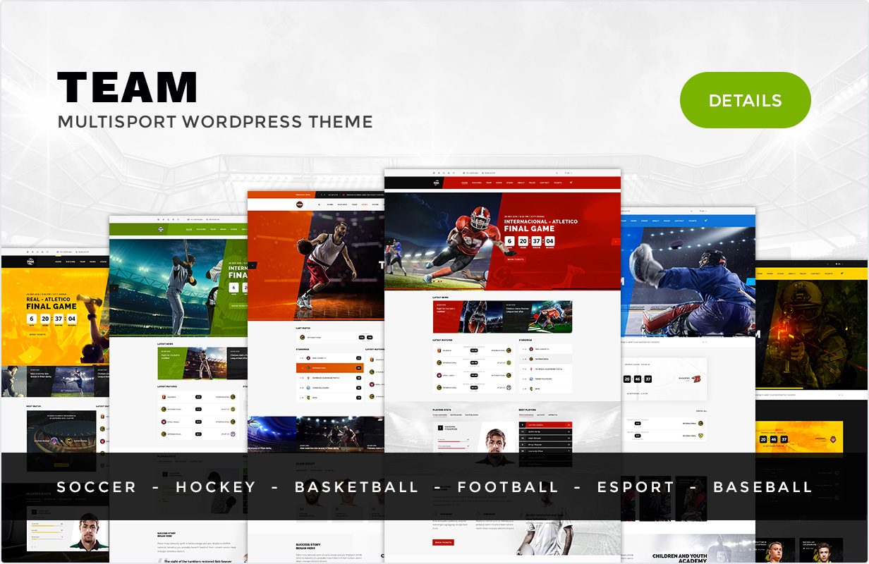 Team WordPress Sport theme