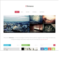 Entrance - WordPress Theme for Magazine and Review - 9