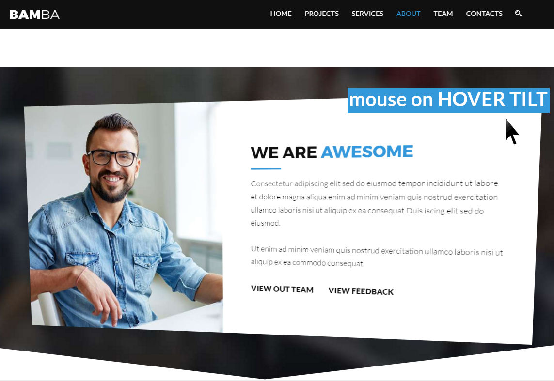 Bamba - One Page Clean Responsive Business HTML5 Template - 4