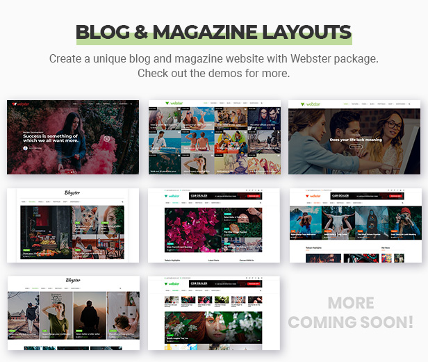 Webster - Responsive Multi-purpose HTML5 Template - 10