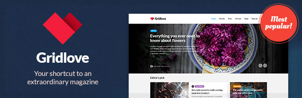 Gridlove - Creative Grid Style News and Magazine WordPress Theme