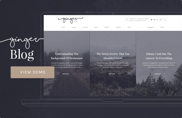 Ginger — Blog/Magazine WordPress Theme