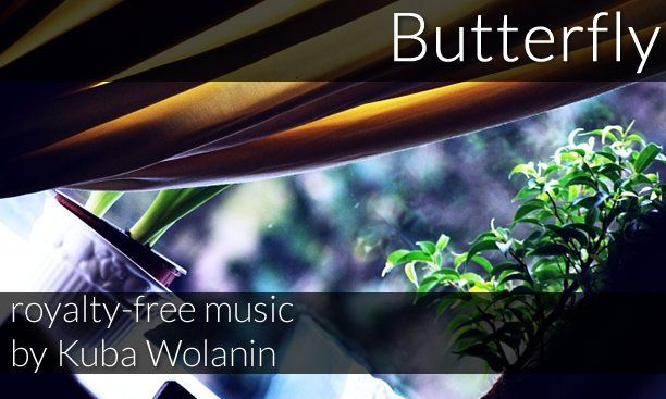 Butterfly (royalty-free track) music by Kuba Wolanin