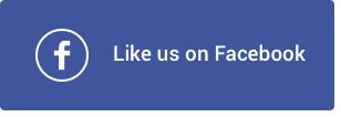ThemePunch Facebook