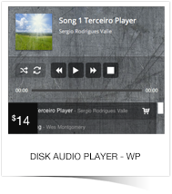 Disk Audio Player For WordPress - 2