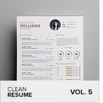 Clean Resume Vol. 5 - 16