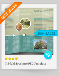Trifold Brochure PSD Template
