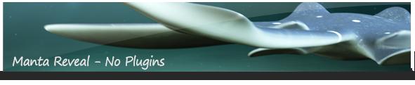 Angler Fish Logo Reveal - 5