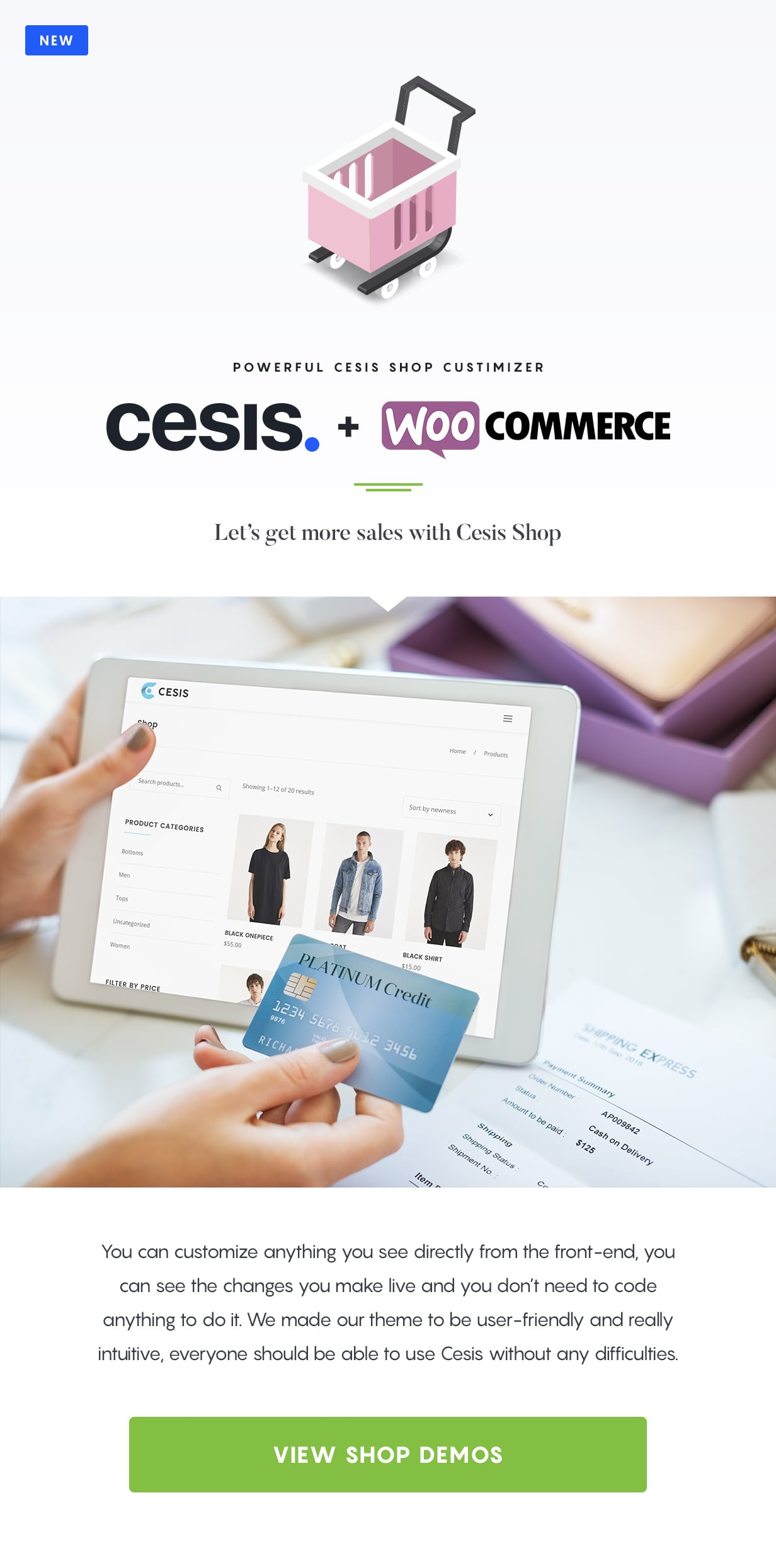 Cesis | Responsive Multi-Purpose WordPress Theme - 5