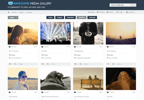 Awesome Media Gallery - 1