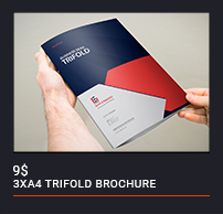 Trifold Brochure - 55