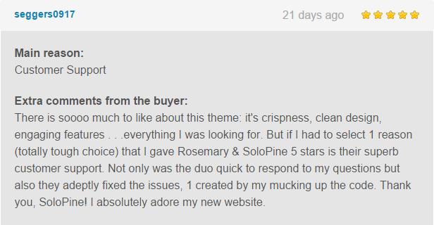 Rosemary - A Responsive WordPress Blog Theme - 1