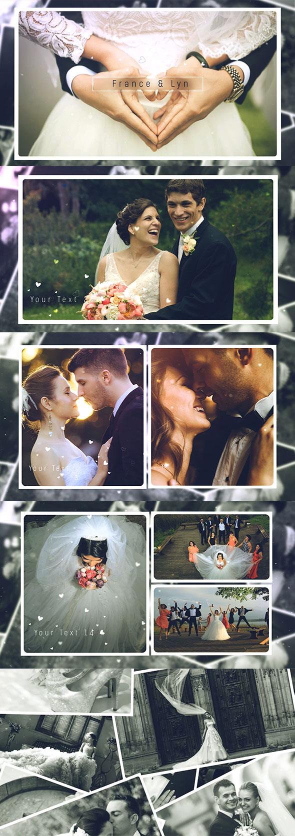 Wedding Gallery - 1