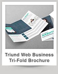 Triund Web Business Bi-Fold Brochure - 7