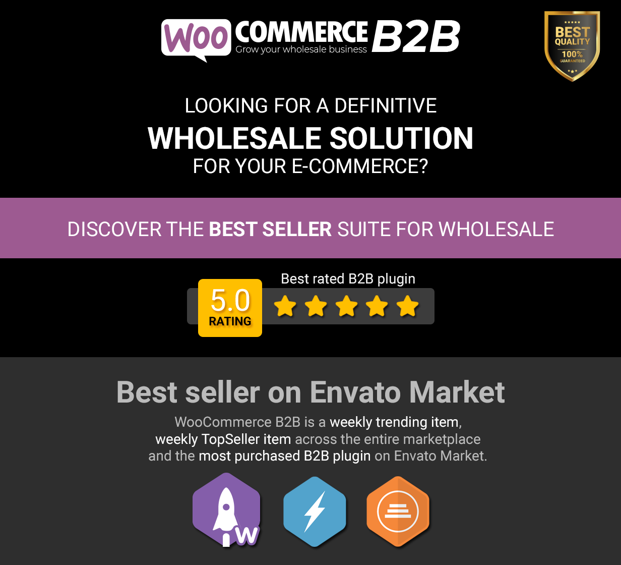 WooCommerce B2B - Intro