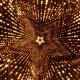Lights Flashing - 319