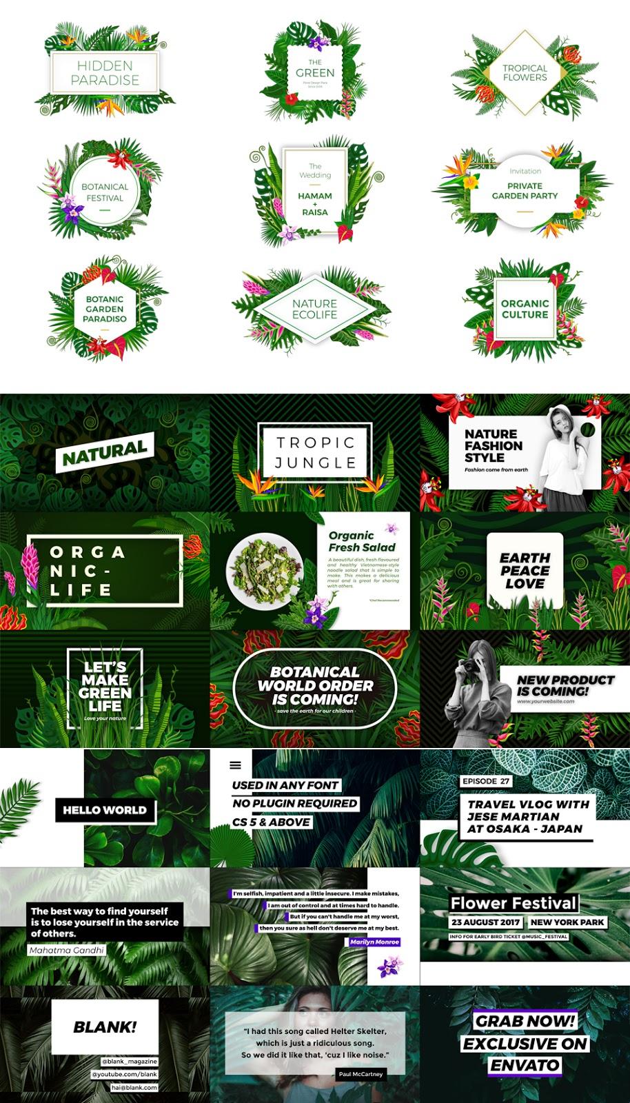 Floral Design Pack - 3