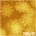 Gold Waves Abstract Backgrounds - 271