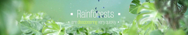 Rain Forest Jungle Adventure Titles