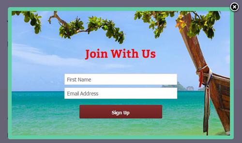 Mailchimp Custom Popup Subscription for wordpress - 12