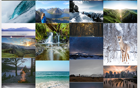 Galeria - Ultimate WordPress Album, Photo Gallery Plugin - 3