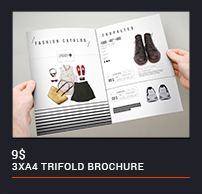 Trifold Brochure - 91