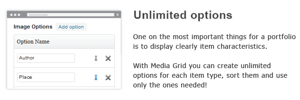 unlimited options