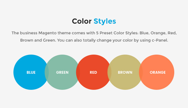Responsive Magento 2.0 Theme  color styles