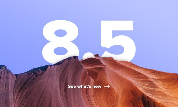 salient v8.5.0